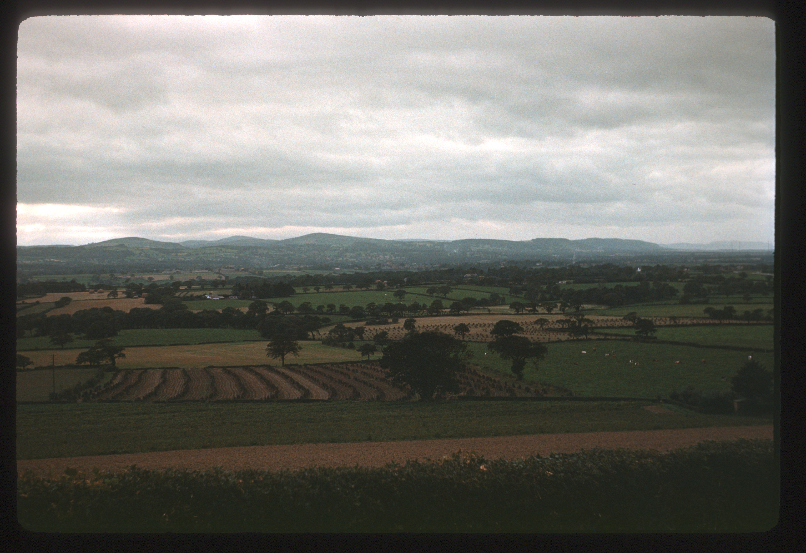 photograph of Clwyd Valley, w. Stooks, dull sky